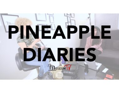 The Pineapple Diaries embodies Boston (JP) & Cultural Latin Situations